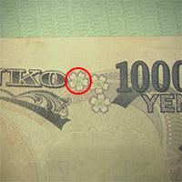 2倍率のマイクロスコープで見た千円札